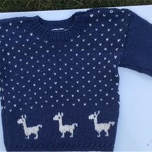 Child Alpaca Jumper
